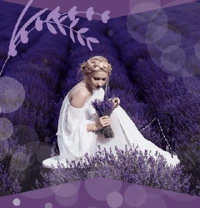 Lumea Lavandei organizare decoratiuni buchete nunta evenimente